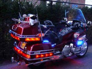 Ксеноновая подсветка мотоцикла Harley Davidson