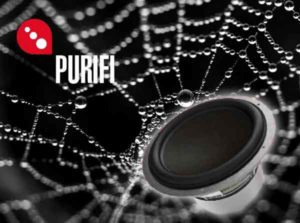 Компания Purifi Audio